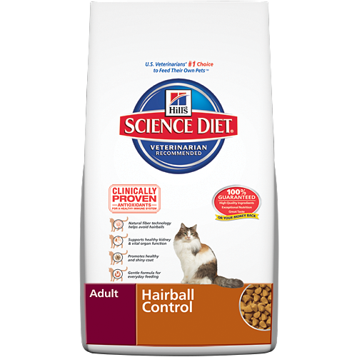 High Nutrition Food For Cats