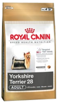 Yorkshire-Terrier-28-Adult_medium