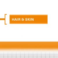 Hair-Skin-33
