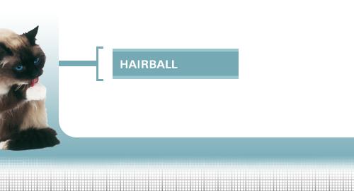 Intense-Hairball-34