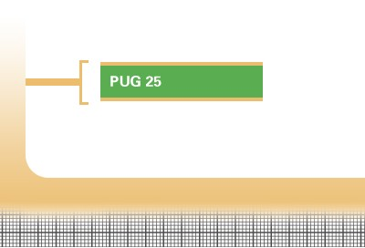 Pug-25