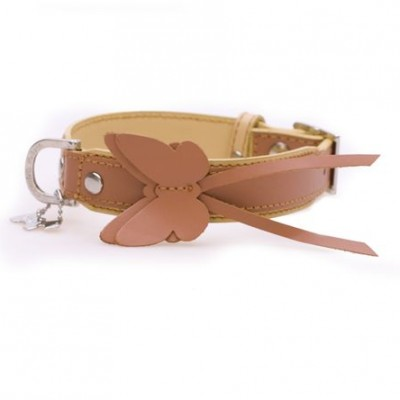 dog collar butterfly orange3