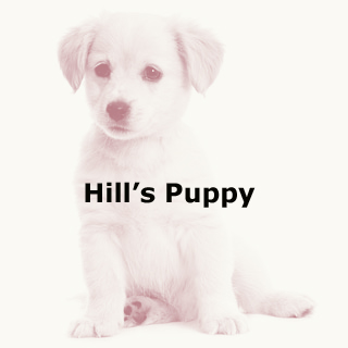Hill's Puppy