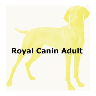 Royal Canin Adult Dog
