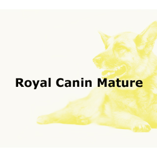 Royal Canin Mature Dog